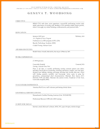 Resume Templates For Nurses Free With Entry Level Cna Resume Sample
