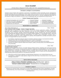8 Project Manager Resume By Nina Designs