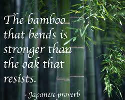 The Bamboo That Bends Artsy Inspi Martial Arts Quotes Quotes