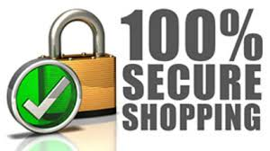 Image result for 100% secure and safe logo