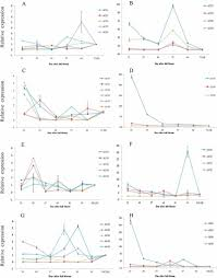 Expression Patterns Of Acs And Aco Gene Families And Ethylene