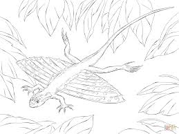 Xianglong Flying Dragons Coloring Page Free Printable Coloring Pages