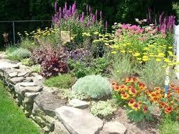 Container Vegetable Garden Ideas  Crafts HomeContainer Garden Plans