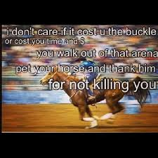 Racing Quotes 55 Stunning 24 Best Horse Quotes For Book Images On Pinterest Equestrian
