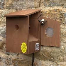 bird wildlife nest box cameras and feeders the nestbox company wired camera nest box