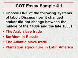 change over time essays five handy examples ppt video online  cot essay sample 1