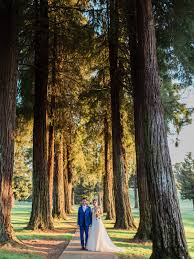 clic country club wedding in gold and blue apollo fotografie lisa and runae hi res