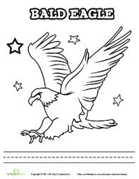 Birds Chart For Kindergarten Bald Eagle The Usas National Bird Lesson Plan