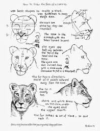 lioness face drawing.  Lioness How To Draw A Female Lioness Face Worksheet On Drawing 2