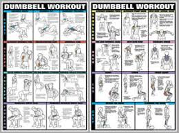 Dumbbell Workout Chart Details About Dumbbell Workout Dumbells Free Weights Pro Fitness Wall Charts 2 Poster Set