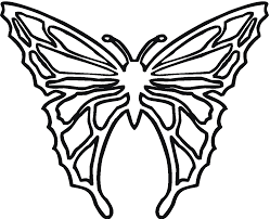 Coloring Page Butterfly Free