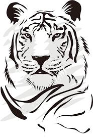 Ver más ideas sobre dibujos, dibujos sencillos, dibujos bonitos. Drawing Tigers Vector Dibujos De Tigres Blanco Y Negro Clipart Full Size Clipart 878560 Pinclipart