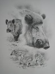 Dominique Pizon Art Hunting Pinterest Wildlife Art Drawings