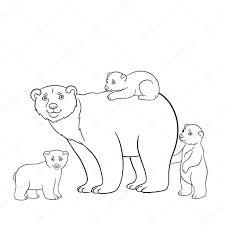 Disegni Orso Polare Da Colorare Disegni Da Colorare Madre Dell