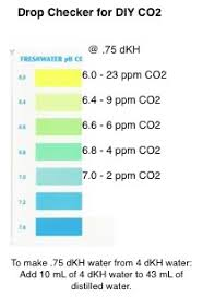 Drop Checker For Diy Co2 The Planted Tank Forum