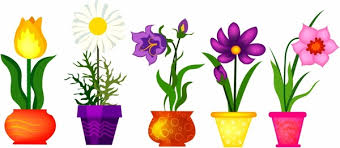 spring flowers in pots free vector in