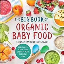 The Big Book of <b>Organic Baby Food</b>: Baby Purées, Finger Foods ...
