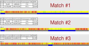 Genetic Genealogy Using Gedmatch An Absolute Beginners Guide