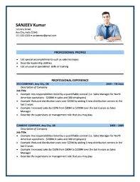 Resume Template American Resume Format Free Career Resume Template