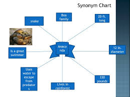 Chart Synonym Ppt Words And Synonyms Dictionary Powerpoint Presentation