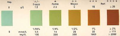 Alcohol And Hypoglycemia In Diabetes Diastix Color Chart
