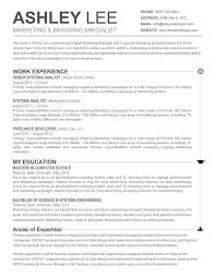 Resume Template Cv Free Microsoft Word Format In Ms 85