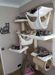 70 brilliant diy cat playground design