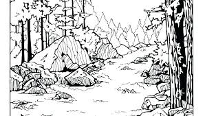 Nature Coloring Pages For Adults Porongurup