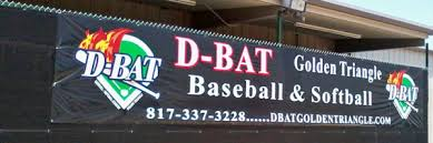 Image result for baseball windscreen logos