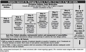 Stepwise Approach For Managing Asthmatures Anatomy System