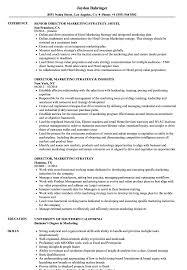 Director Marketing Strategy Resume Samples Velvet Jobs