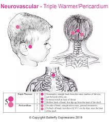 16 Tcm Headaches 5 Triple Warmer Pericardium