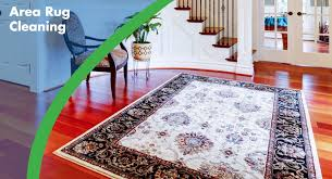 carpet rug cleaning services for your home