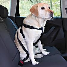 Ремень безопасности <b>TRIXIE Автомобильный ремень</b> ...