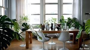 home plants decor most beautiful decorative house in creative decorations