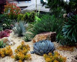 Small Picture 366 best xeriscape designs images on Pinterest Landscaping ideas