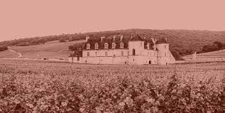 Burgundy Vintage Chart 2016 Vintage Report Archives Winehog Burgundy With A Passion