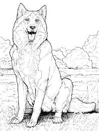 Small Picture Stunning Realistic Werewolf Coloring Pages Images Coloring Page