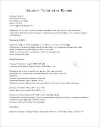 Resume Objective For It Job Enchanting Field Service Technician Resume Laboratory Assistant Job Description