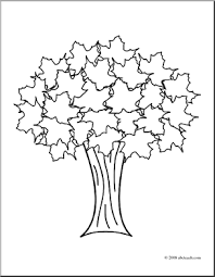 Small Picture Collection Coloring Pages Of Trees With Leaves Pictures Images