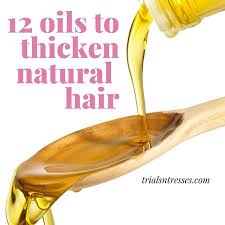 12 oils to help thicken your natural hair