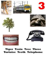 things that begin with the letter t resource pictures of objects start with letters a to z learn the