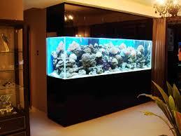 fish tank stand design ideas office aquarium. Modern Fish Tanksfish Tank Hd Animal Online Tanks For Sale Stand Design Ideas Office Aquarium
