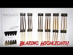 Scruples Blazing Highlights With David Steiner No Bleach