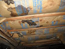 installing insulation in crawl space. Wonderful Insulation Insulation The Insulation In This Crawl Space  With Installing Insulation In Crawl Space