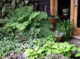 Small Picture Partial Shade Garden Ideas Photograph Garden Design 2011