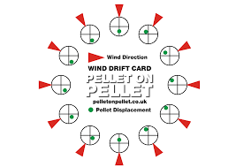 Wind Direction Chart Field Target Shooting In Wind Chart Pellet On Pellet
