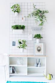indoor garden ideas hang your plants from the ceiling walls this wall