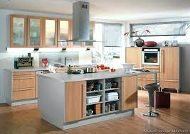 light grey kitchen cabinets with wood floors more pictures a modern light wood kitchen light grey kitchen cabinets with wood floors