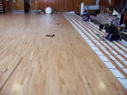 compare signawood beech to traditional maple floors